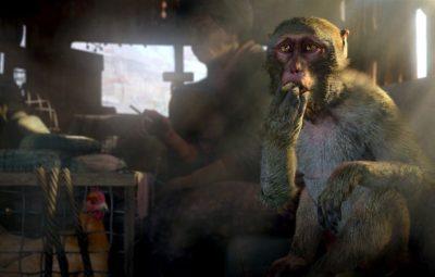 """Ubisoft:«Серию Far Cry ждёт долгая история»"""""""